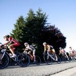 Schnelles Rennen in Waldalgesheim
